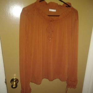 Lft burnt orange sheer blouse